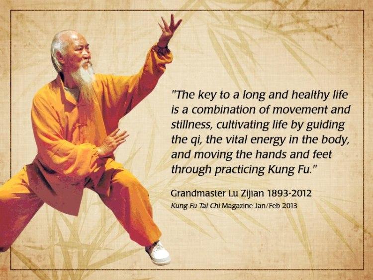 Kung Fu Energy