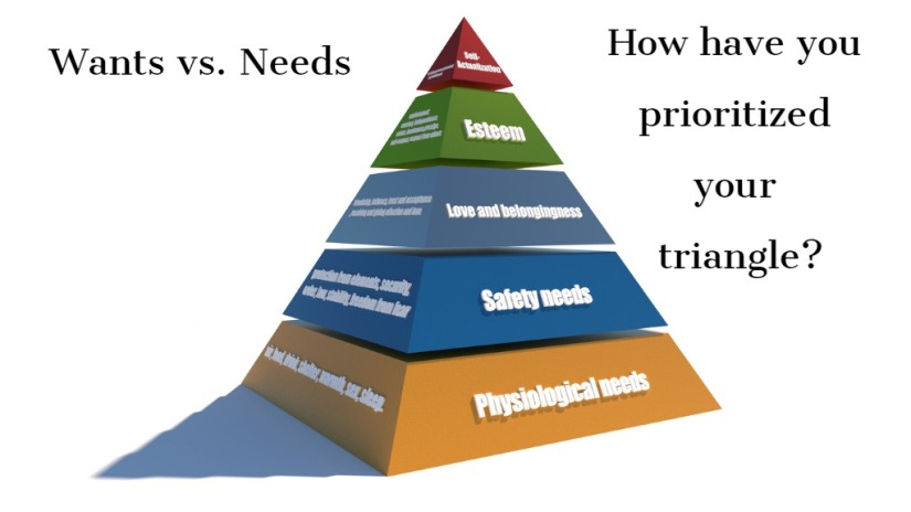 Wants vs Needs Triangle