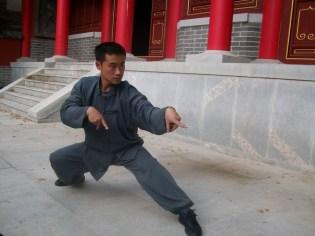 praying mantis kung fu 3