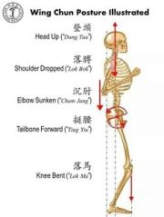 Wing Chun Posture Illustrated